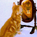 A Look at How You Can Improve Your Self-image