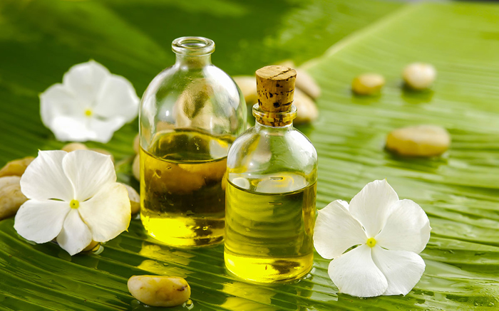 Carrier Oils In Aromatherapy
