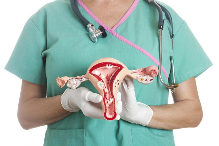 Inflammation of the Uterus