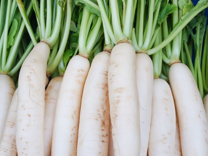 Radish – Natural Benefits and Uses