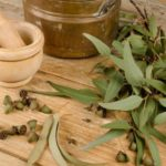 Eucalyptus Herb – Uses And Side Effects